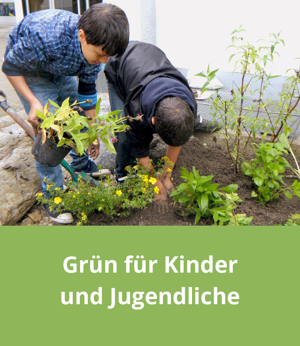 Grün für Kinder und Jugendliche
